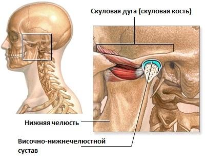 Нагрузка на височно-нижнечелюстной сустав эндопротезирование т/б сустава реабилитация