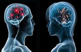 Кто умнее: мужчины или женщины? Ученые дали ответ на извечный вопрос