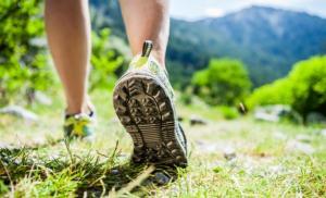 5 важных причин сходить сегодня на прогулку
