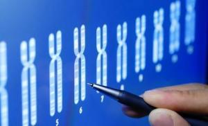 Ученые обнаружили ген, способствующий развитию рака толстой кишки