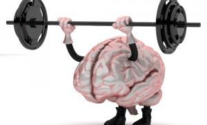 Два способа тренировки головного мозга