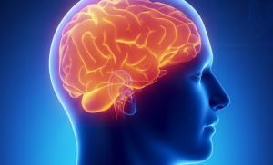 Здоровый сон – защита функций головного мозга