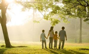Регулярные прогулки с семьей помогают контролировать артериальное давление