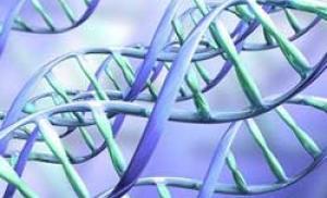Генетическое изменение, связанное с серьезным риском заболевания гриппом