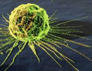 По утверждению биологов рак - это новый развивающийся вид паразитов.