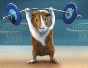 Как подобрать оптимальную физическую нагрузку при занятии спортом