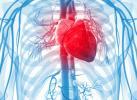 Мастер-класс по интервенционной кардиологии